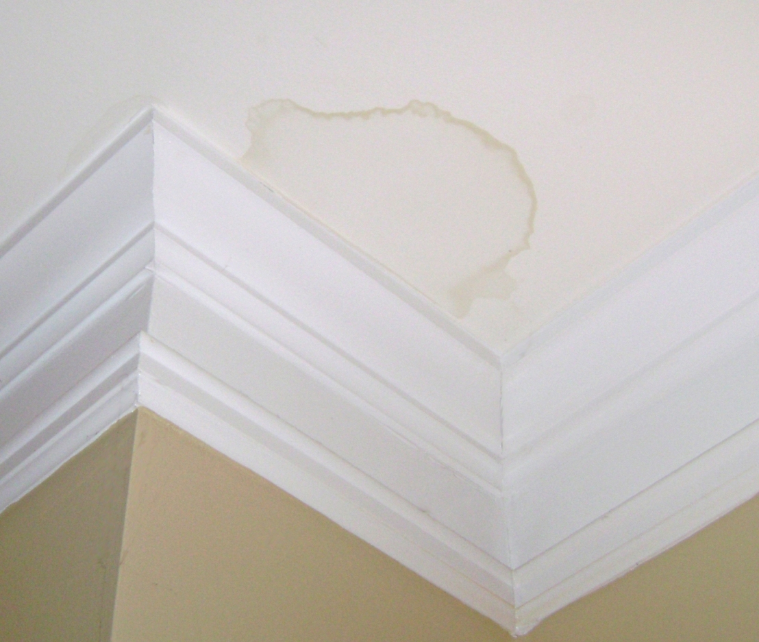 How To Fix Bathroom Ceiling Paint Peeling: How To Repair Ceiling Water Stains